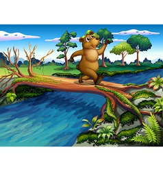 River crossing bear vector