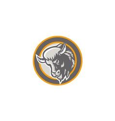 American buffalo bison head circle retro vector