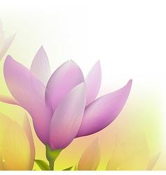 Abstract Magnolia vector image vector image