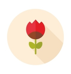 Flower flat icon vector image