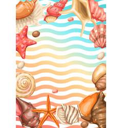 Frame with seashells tropical underwater mollusk vector