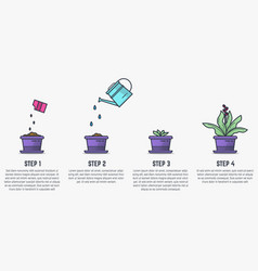 Growing stages plant vector