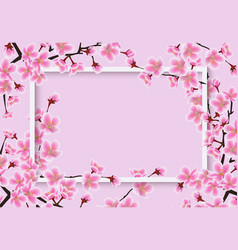 horizontal sakura or cherry tree with blossom vector image