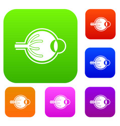 human eyeball set collection vector image