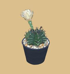 indoor plants in pots sketch vector image