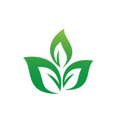 leaf eco logo vector image
