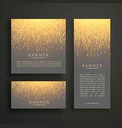 Luxury light sparkle banner card design in vector