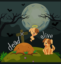 opposite words for dead and alive vector image