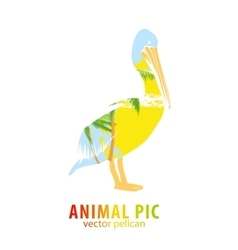 Pelican and palm trees vector image vector image