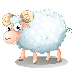 A hairy sheep vector