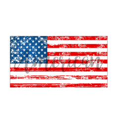 american flag on a white background in flat style vector image