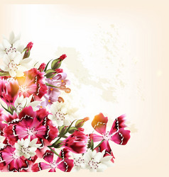 beautiful background with pink flowers vector image