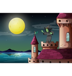 Castle witch vector