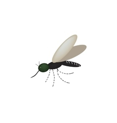 Mosquito on the isolated background vector