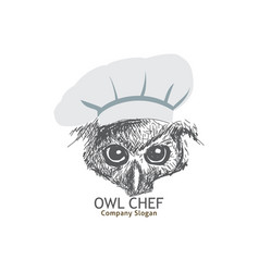 owl chef vector image