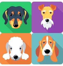 set dogs icon flat design vector image