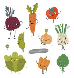a variety vegetables set vector image