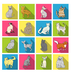Cat breeds set icons in flat style big collection vector