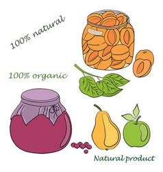Conservation fruits vector