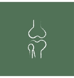 Knee joint icon drawn in chalk vector