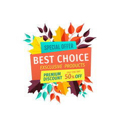 special offer logo best choice for autumn season vector image