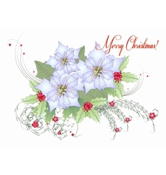 Card with White Poinsettia vector image vector image