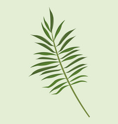 leave palm tropical natural vector image