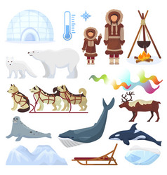 arctic northern borealis norway and husky vector image