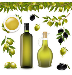 Big set with branch olives and with white vector