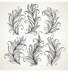 Feathers leaves Hand drawn vector