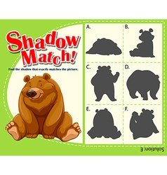 Game template for shadow matching bear vector image