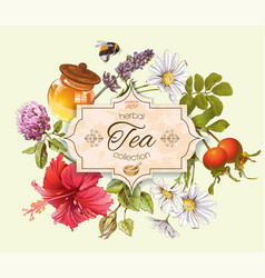 Herbal tea banner vector