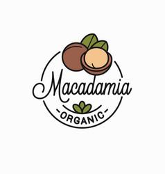 Macadamia nut logo round linear macadamia vector