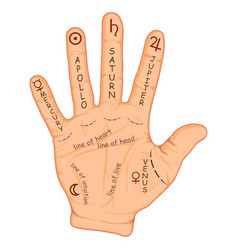 Palmistry or chiromancy hand with signs vector