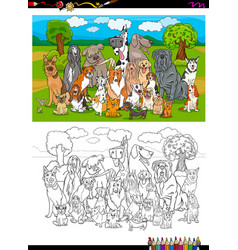 Purebred dogs group coloring book vector