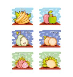 set fruits healthy food vector image