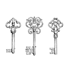 sketches vintage keys with forged elements vector image
