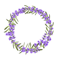the lavender elegant wreath vector image