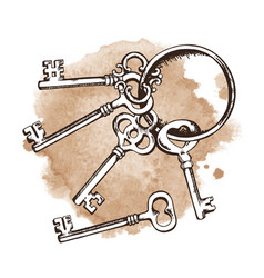 vintage keys on ring over watercolor background vector image