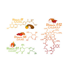 vitamin complex with food b1 b6 b9 b12 label and vector image