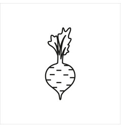 beet simple icon on white background vector image