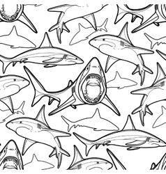 Graphic sharks pattern vector