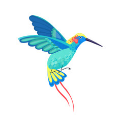 Hummingbird with bright feathers hovering vector