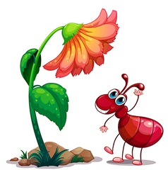A giant flower beside the red ant vector