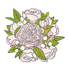 bouquet of peonies sketch for your design vector image