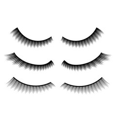 creative of false eyelashes vector image
