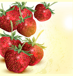 grunge background with realistic strawberry vector image
