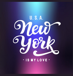 new york is my love vector image