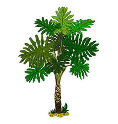 Palm trees isolated on white background vector