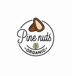 pine nut logo round linear peeled nuts vector image